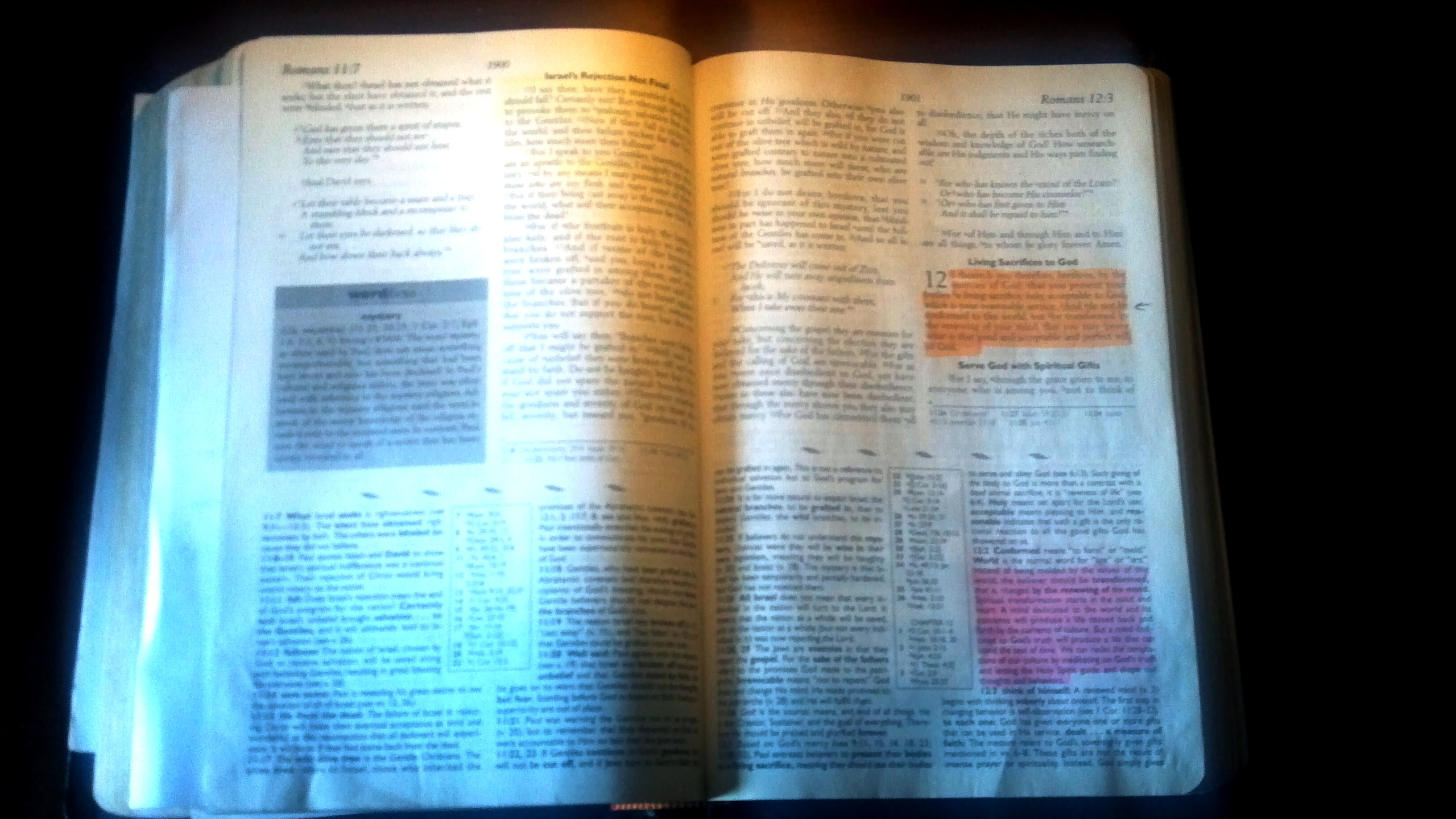 THE BIBLE TEACHES US TO STUDY TO SHOW OURSELVES APPROVED. (PHOTO BY PASTOR DAVIS)