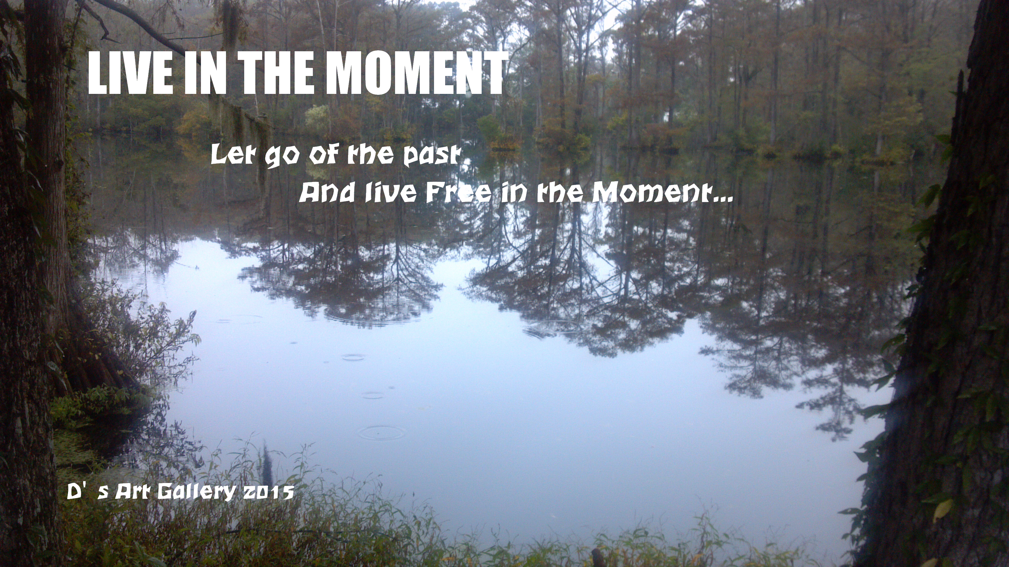 LIVE IN THE MOMENT (Photo by Pastor Davis)