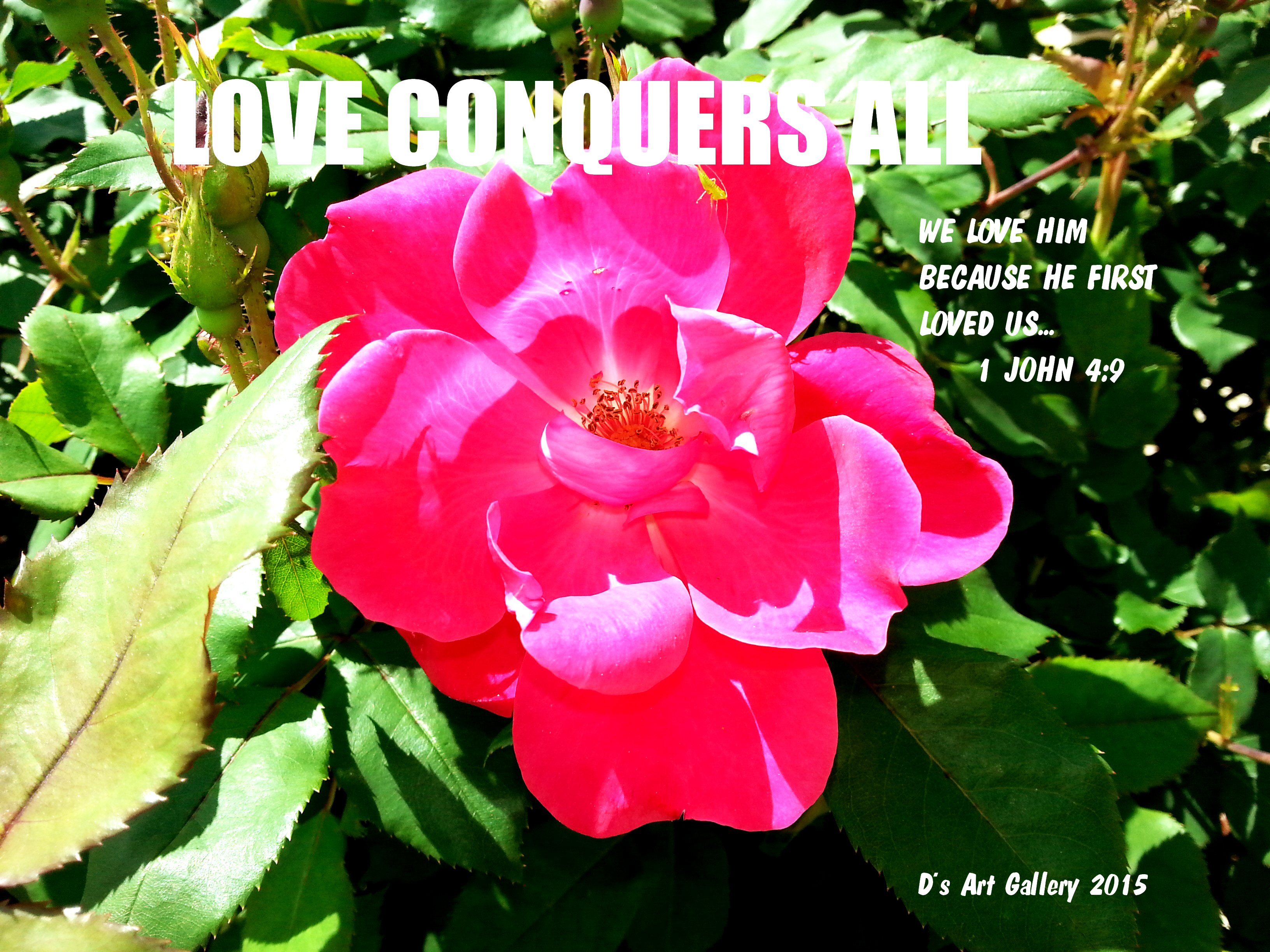 LOVE CONQUERS ALL (Photo by Pastor Davis)
